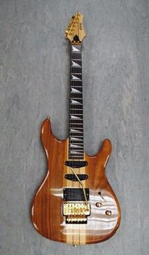 Shine by Chase SIT-701SN Electric Guitar £210