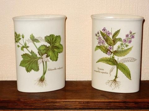 Pair of Poole Pottery Vases - Country Lane
